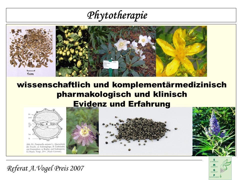 Phytotherapie wissenschaftlich und komplementärmedizinisch