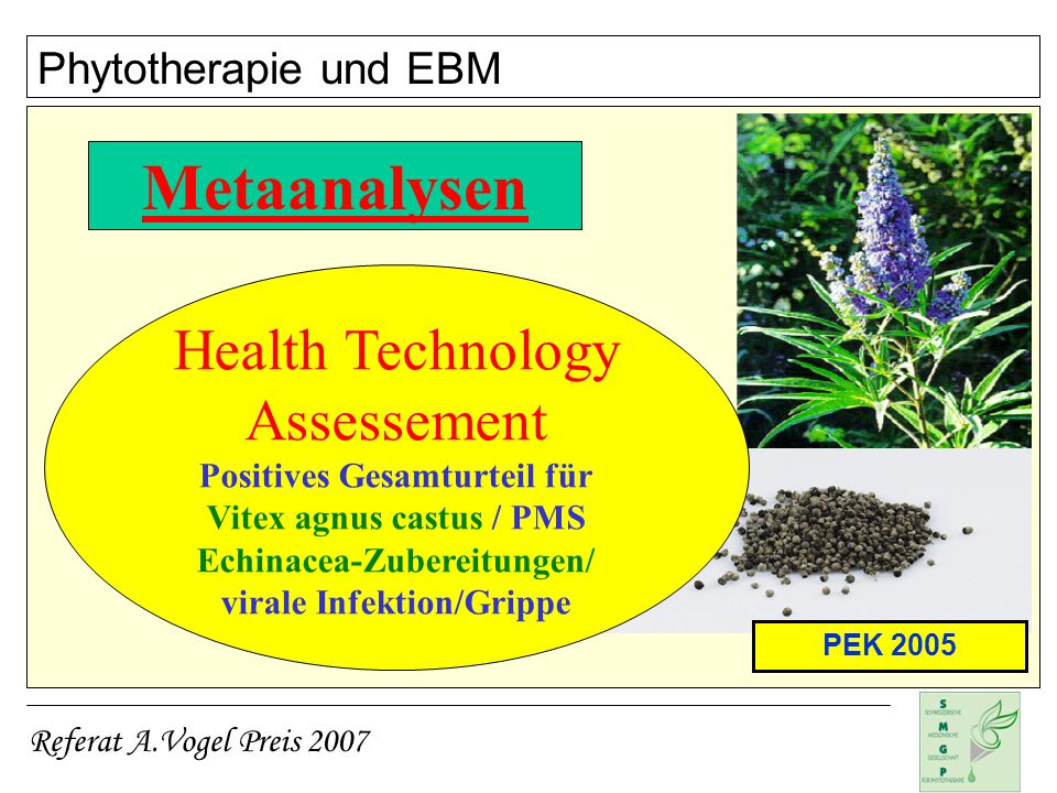 Metaanalysen Health Technology Assessement Phytotherapie und EBM