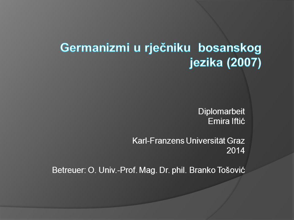 Germanizmi u rječniku bosanskog jezika (2007)