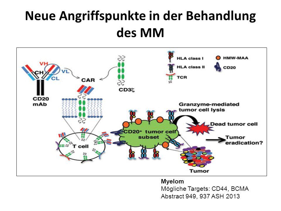 Neue Angriffspunkte in der Behandlung des MM