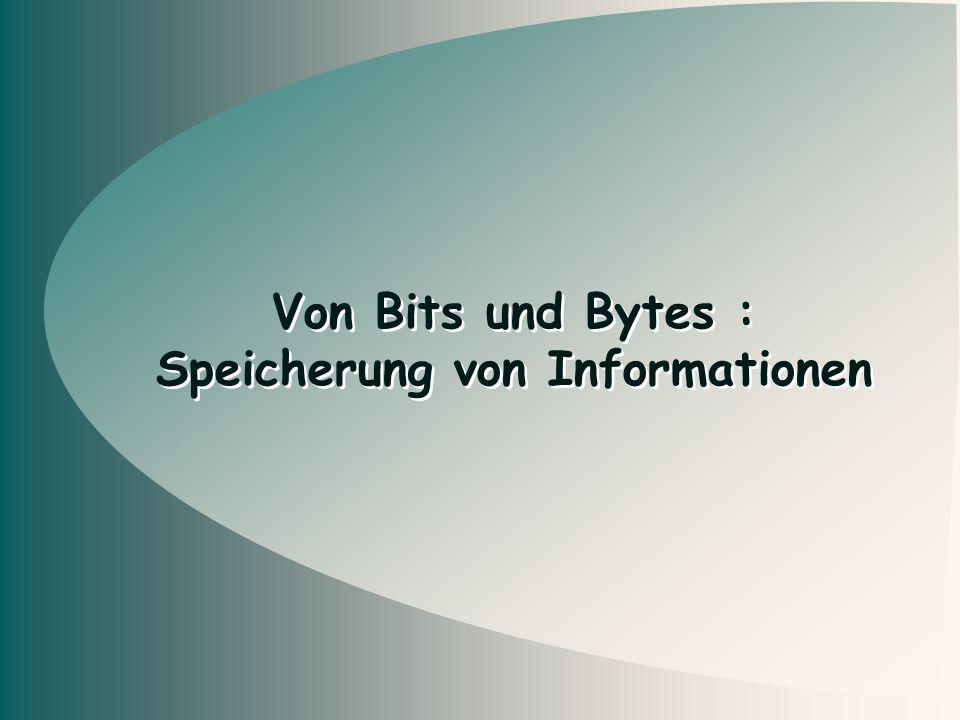 Speicherung von Informationen
