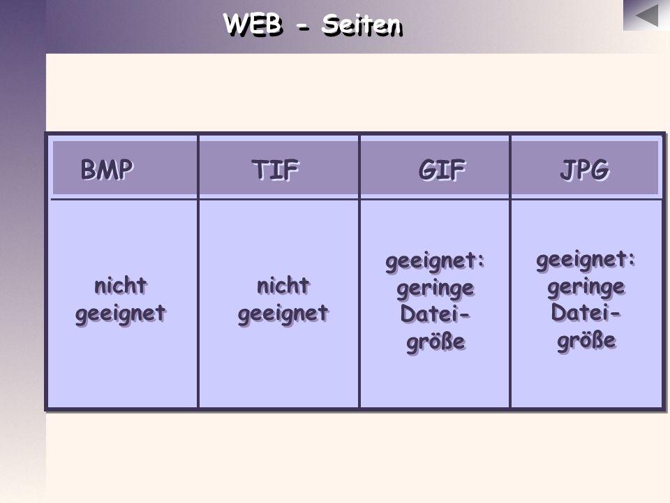 WEB - Seiten BMP GIF JPG TIF geeignet: geringe Datei-größe geeignet: