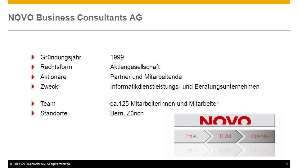 NOVO Business Consultants AG