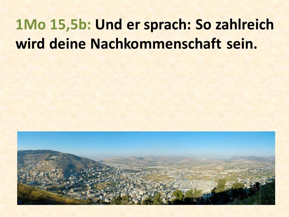 1Mo 15,5b: Und er sprach: So zahlreich wird deine Nachkommenschaft sein.