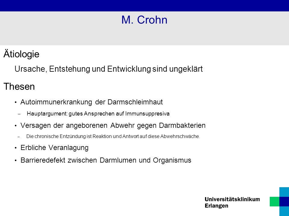 M. Crohn Ätiologie Thesen