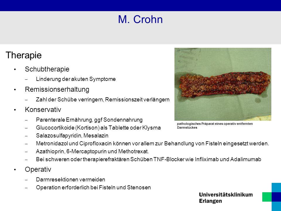 M. Crohn Therapie Schubtherapie Remissionserhaltung Konservativ