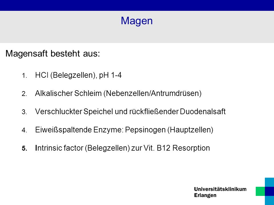 Magen Magensaft besteht aus: HCI (Belegzellen), pH 1-4