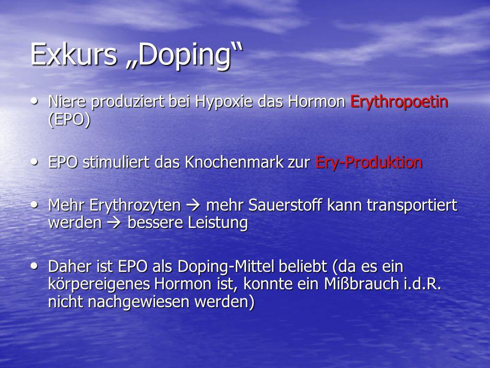 """Exkurs """"Doping Niere produziert bei Hypoxie das Hormon Erythropoetin (EPO) EPO stimuliert das Knochenmark zur Ery-Produktion."""