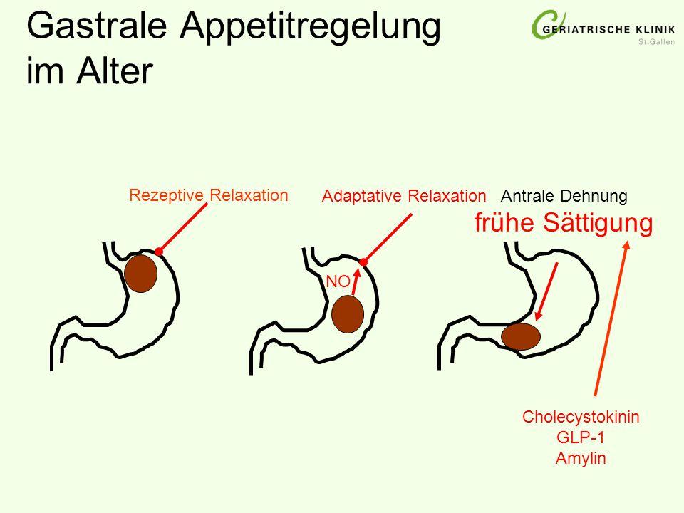 Gastrale Appetitregelung im Alter