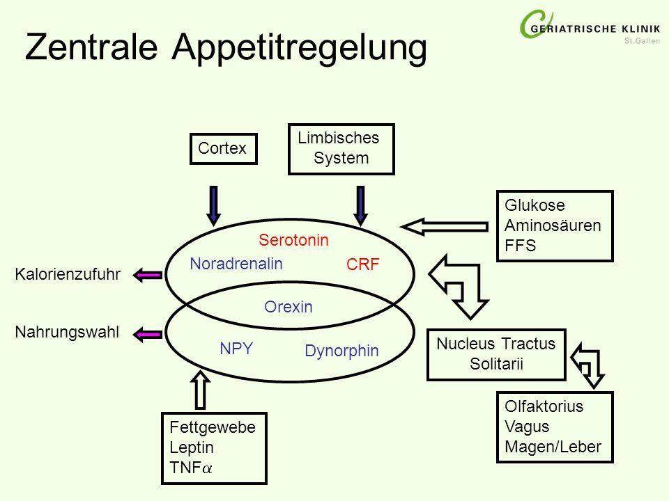 Zentrale Appetitregelung