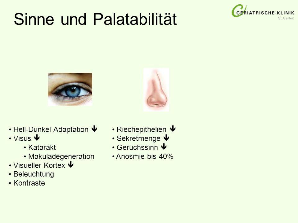 Sinne und Palatabilität