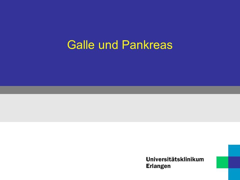 Galle und Pankreas
