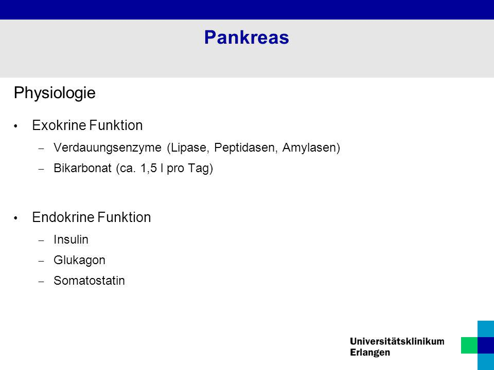 Pankreas Physiologie Exokrine Funktion Endokrine Funktion