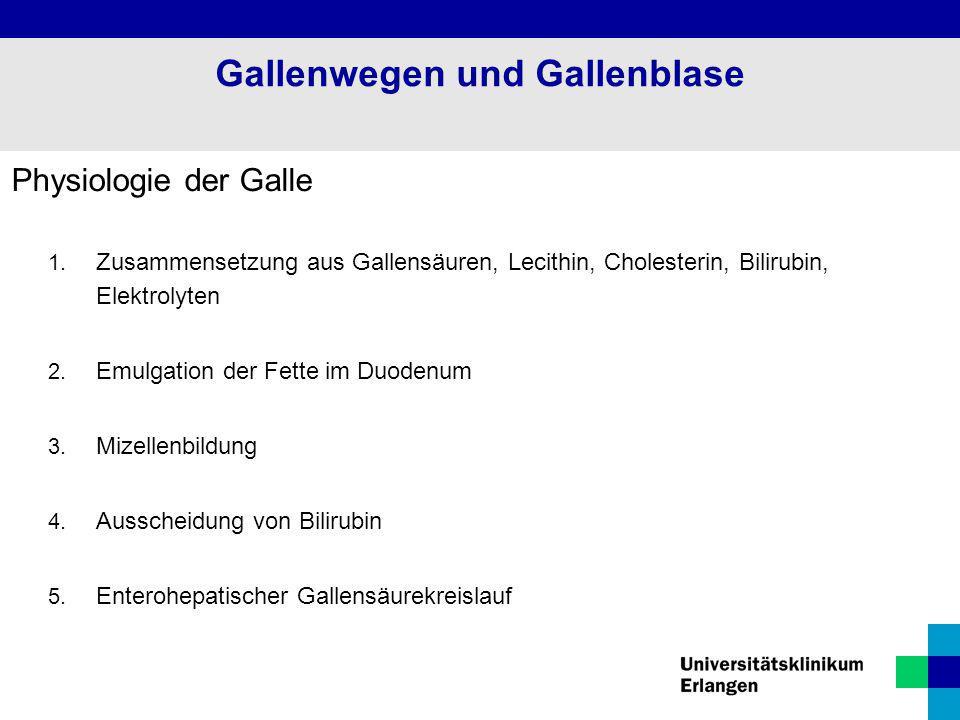 Gallenwegen und Gallenblase