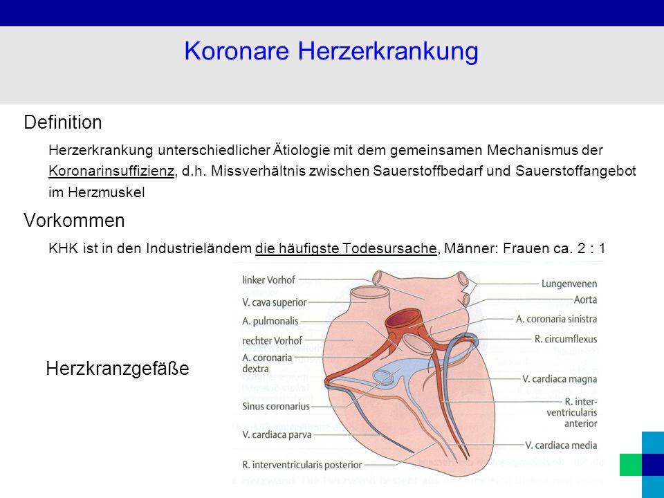 Ziemlich Anatomie Und Physiologie Begriffe Und Definitionen Fotos ...