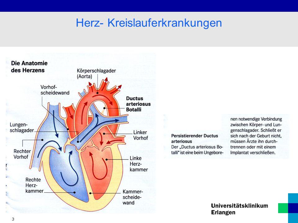 Fein Anatomie Des Herzens Und Der Blutfluss Fotos - Menschliche ...