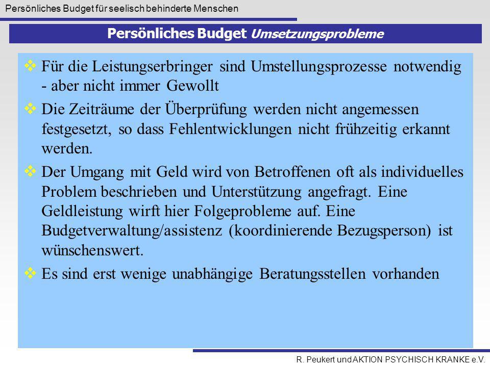 Persönliches Budget Umsetzungsprobleme