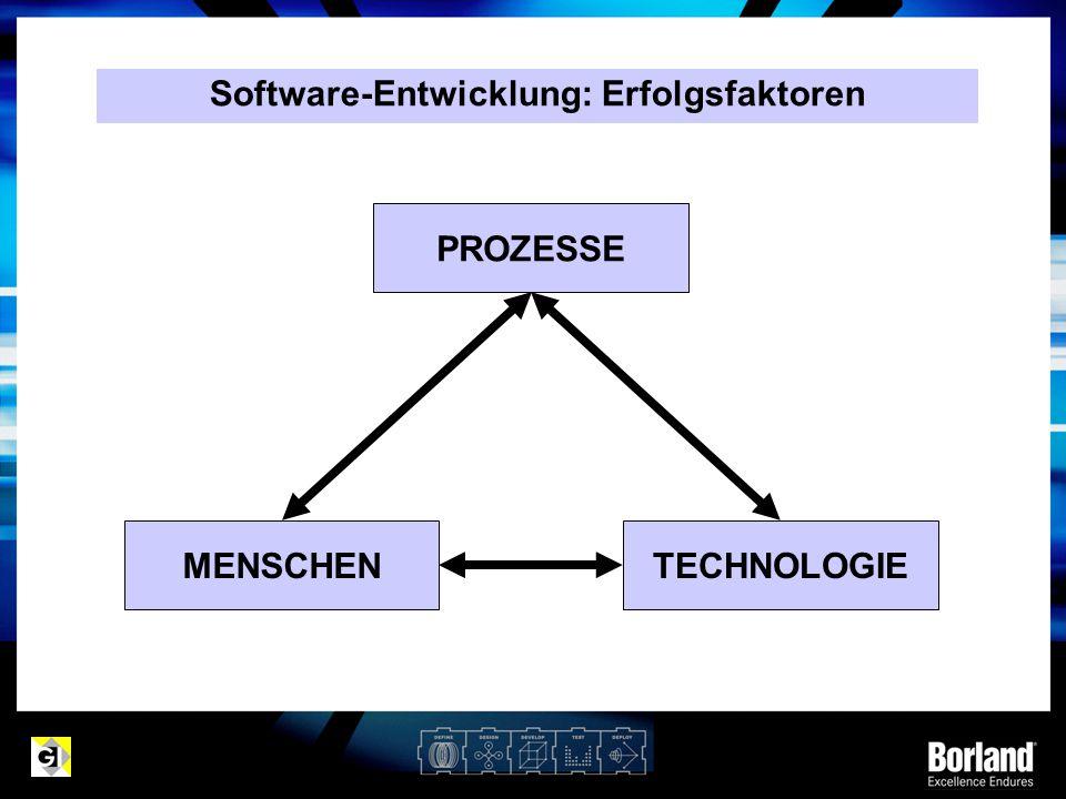 Software-Entwicklung: Erfolgsfaktoren