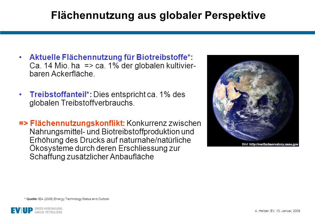 Flächennutzung aus globaler Perspektive