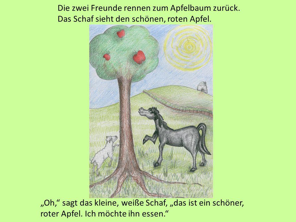 Die zwei Freunde rennen zum Apfelbaum zurück