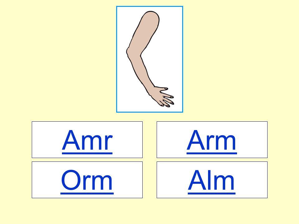 Amr Arm Orm Alm