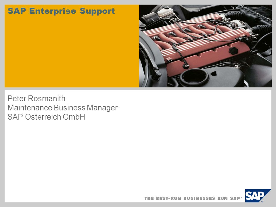 SAP Enterprise Support