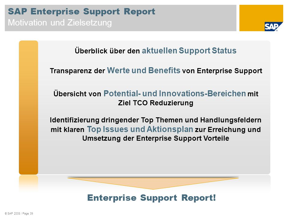 SAP Enterprise Support Report Motivation und Zielsetzung