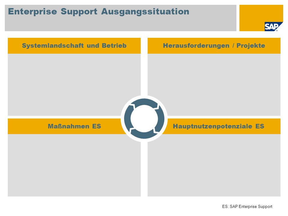 Enterprise Support Ausgangssituation