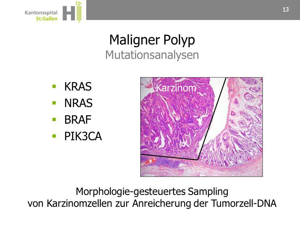 Maligner Polyp Mutationsanalysen
