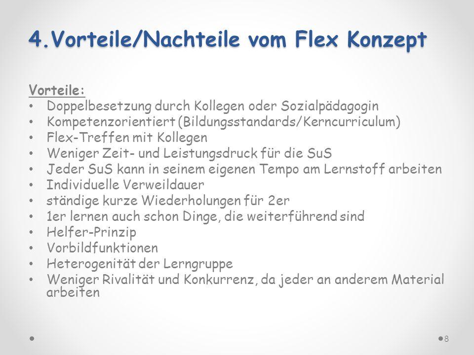 4.Vorteile/Nachteile vom Flex Konzept