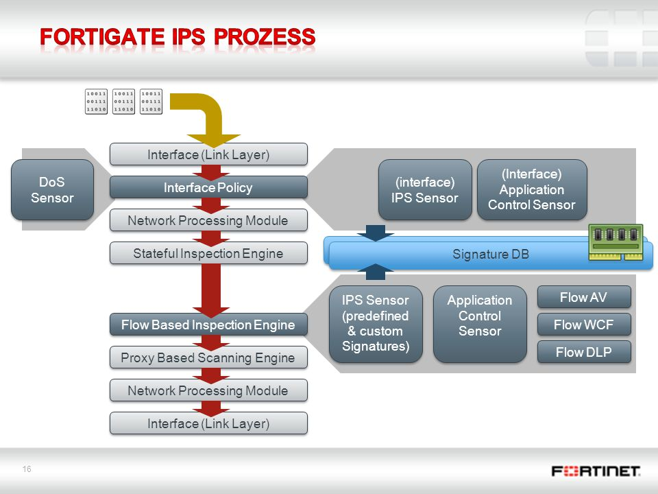 FortiGate IPS Prozess Interface (Link Layer) DoS Sensor (interface)