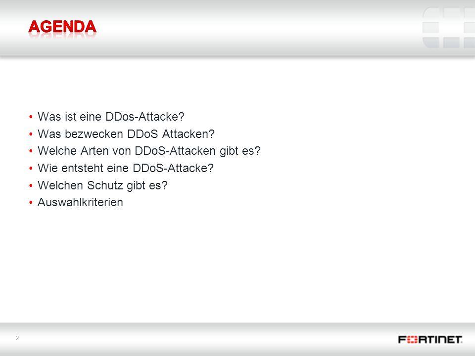 Agenda Was ist eine DDos-Attacke Was bezwecken DDoS Attacken