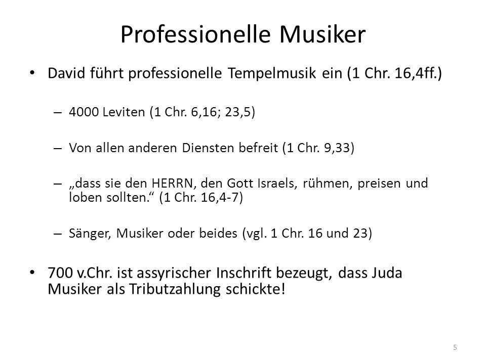 Professionelle Musiker