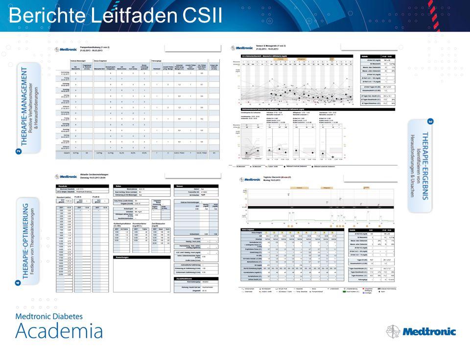 Berichte Leitfaden CSII