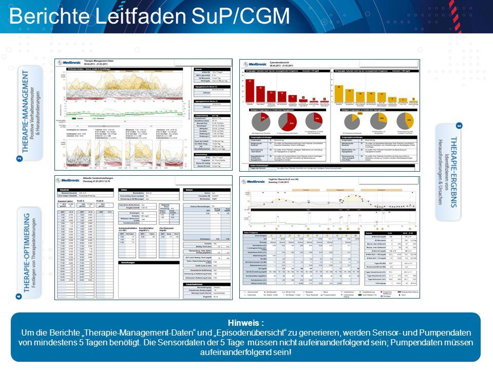 Berichte Leitfaden SuP/CGM