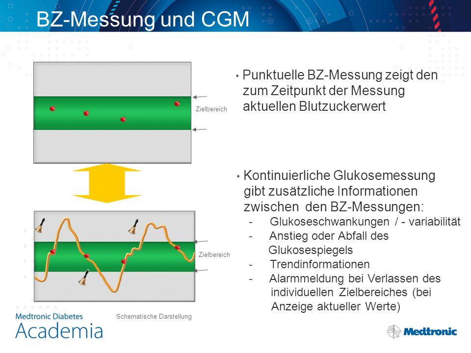 BZ-Messung und CGM zum Zeitpunkt der Messung aktuellen Blutzuckerwert
