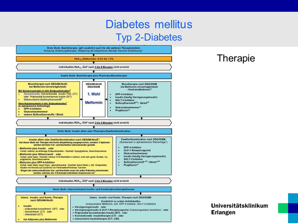 Diabetes mellitus Typ 2-Diabetes Therapie