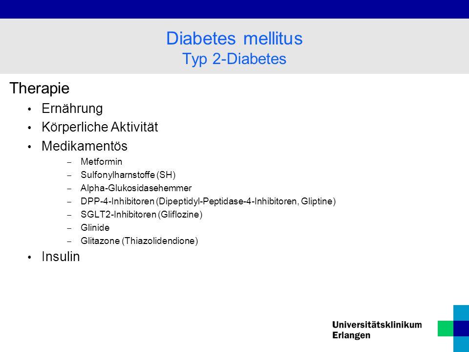 Diabetes mellitus Typ 2-Diabetes Therapie Ernährung