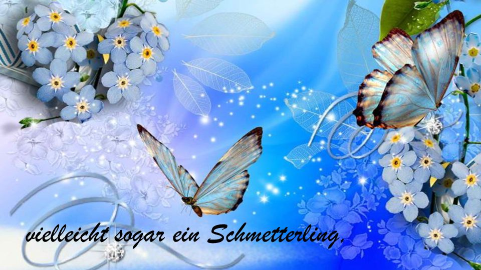 vielleicht sogar ein Schmetterling,