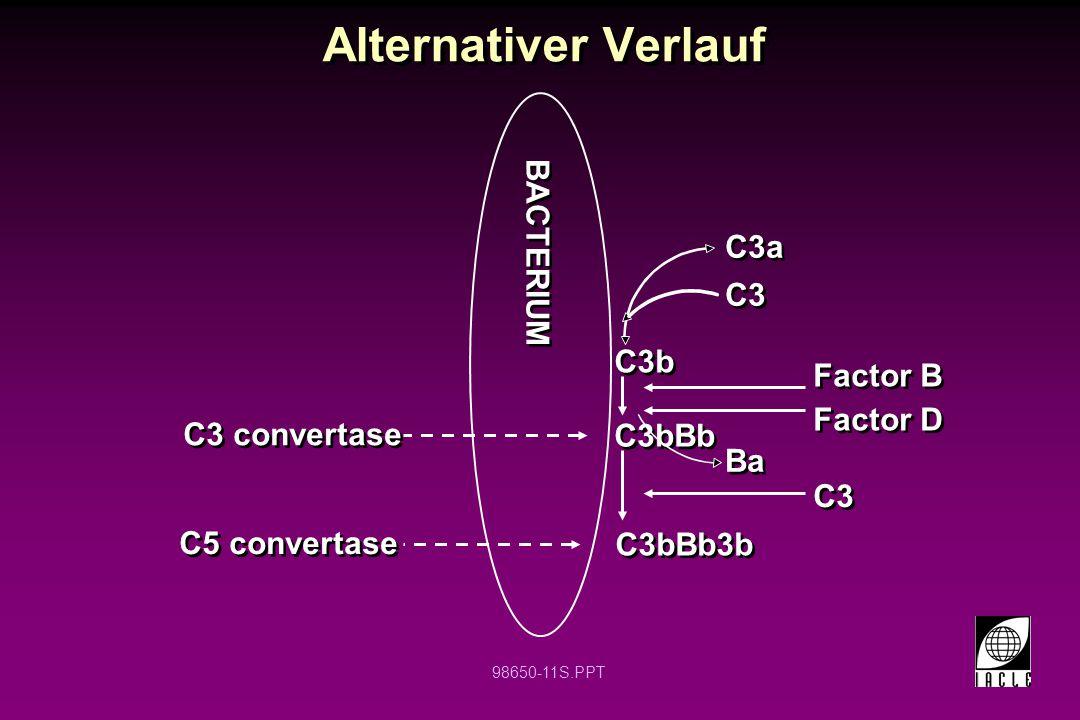 Alternativer Verlauf BACTERIUM C3a C3 C3b Factor B Factor D