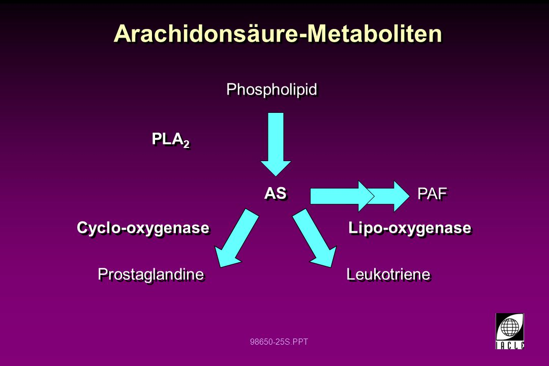 Arachidonsäure-Metaboliten