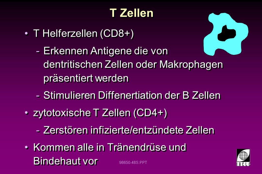 T Zellen T Helferzellen (CD8+)