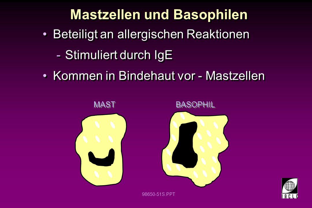 Mastzellen und Basophilen