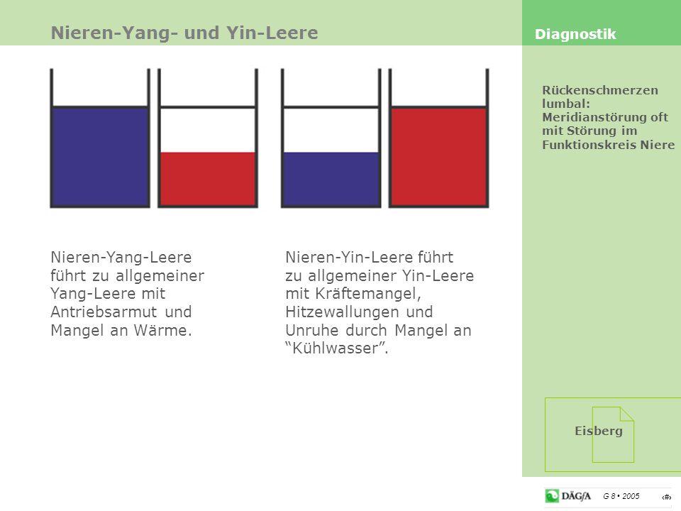 Nieren-Yang- und Yin-Leere