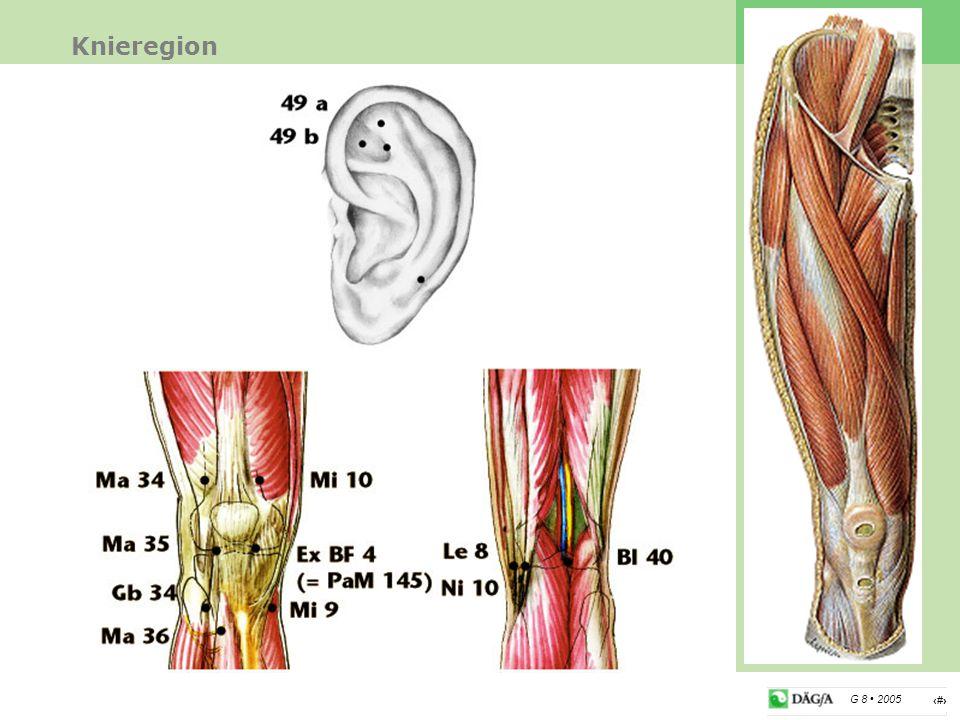 Knieregion Therapie Das Knie hat eine energetische Schlüsselposition