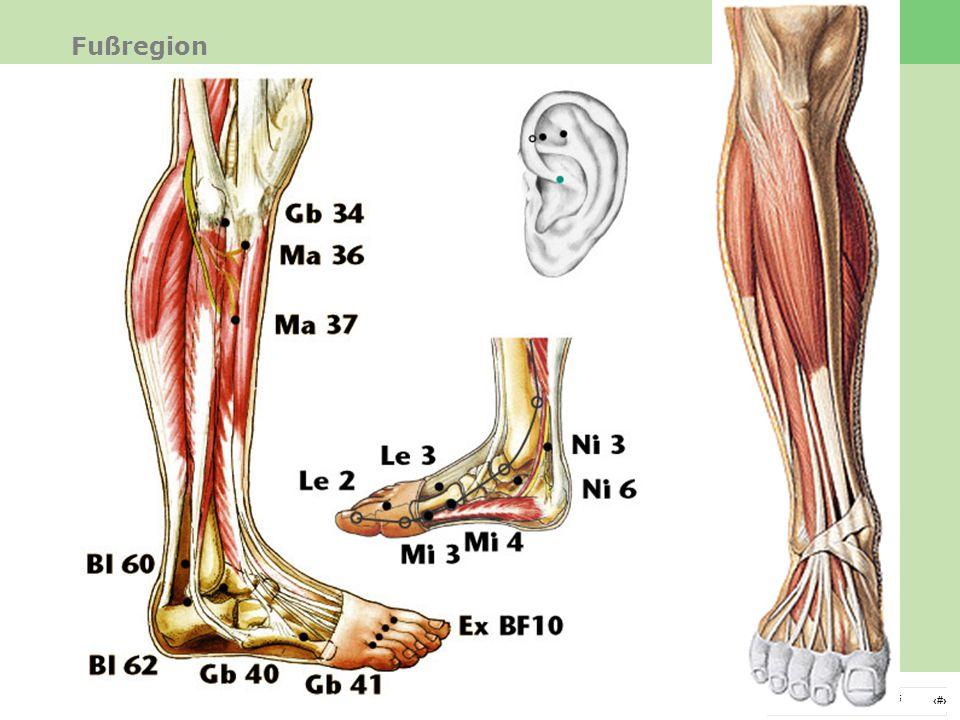 Fußregion Therapie