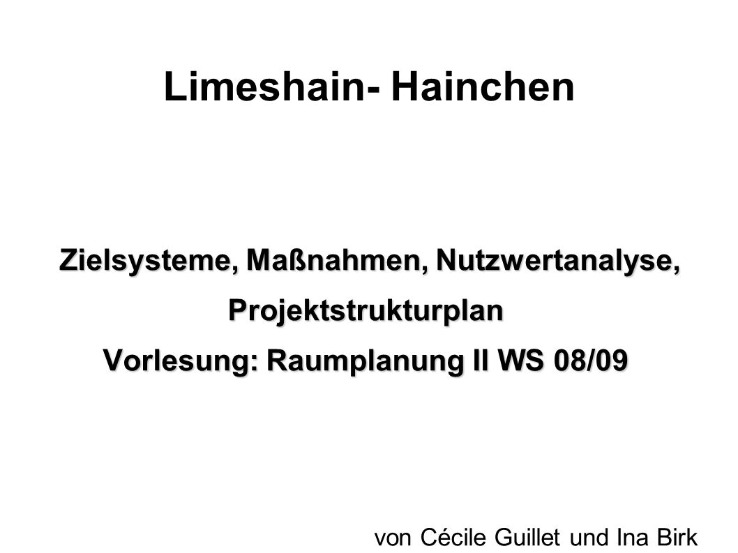 Limeshain- Hainchen Zielsysteme, Maßnahmen, Nutzwertanalyse, Projektstrukturplan. Vorlesung: Raumplanung II WS 08/09.