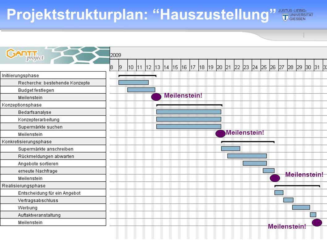 Projektstrukturplan: Hauszustellung