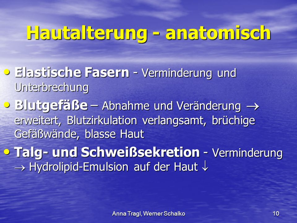 Hautalterung - anatomisch