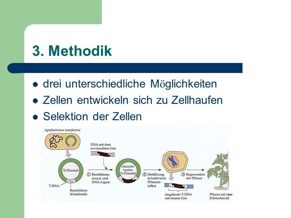 3. Methodik drei unterschiedliche Möglichkeiten